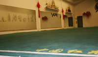 Competition carpet at O-mei Wushu Center